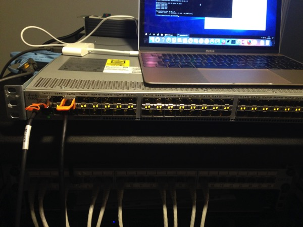 A Cisco Nexus 3064 Switch