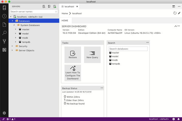 Running SQL Server with Docker on the Mac |