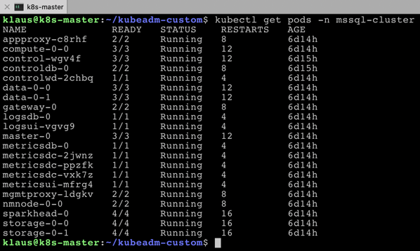 All Kubernetes Pods are up and running